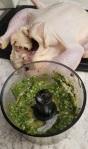 cumin cilantro roastchicken2
